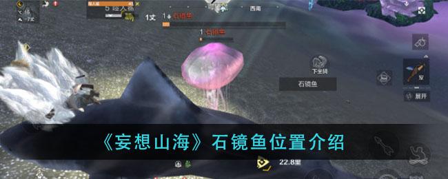 妄想山海石镜鱼位置攻略